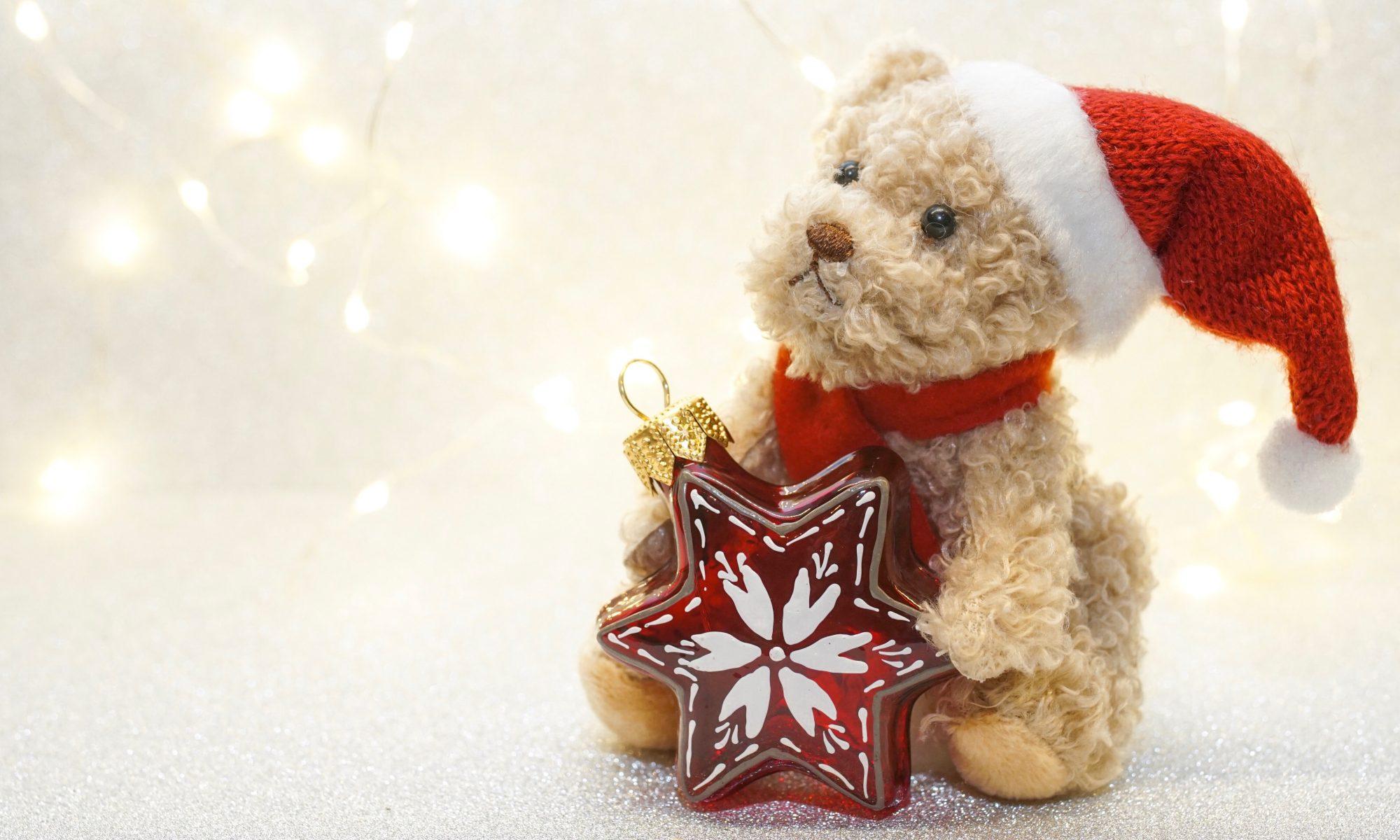 Fröhliche Weihnachten und ein frohes Neues Jahr!